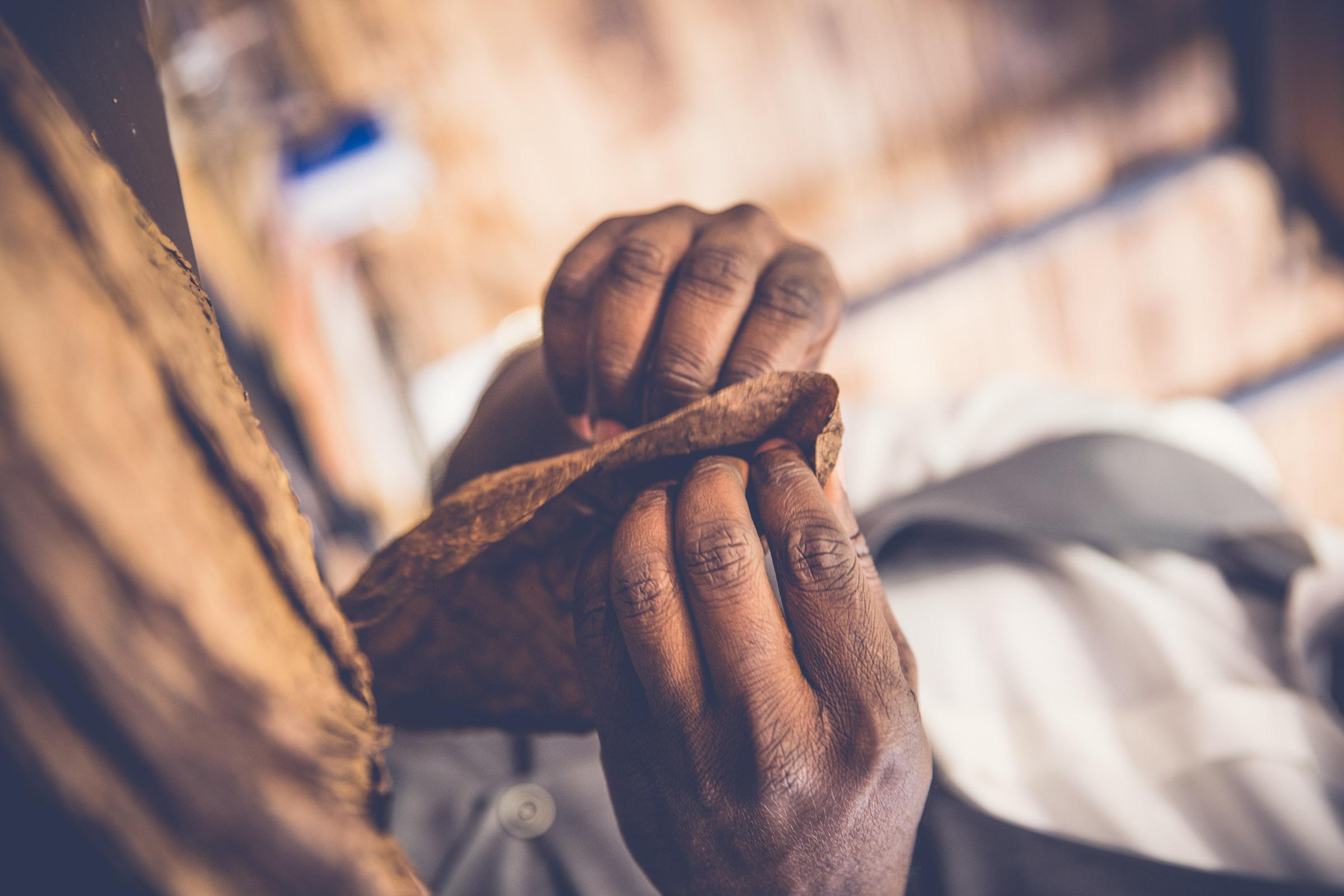 Zigarrenroller - Zigarrenrollerin | Zigarrendreher | Zigarrenherstellung | Hochzeit | Messen | Gala |Event | Buchen | Mieten | Anfragen